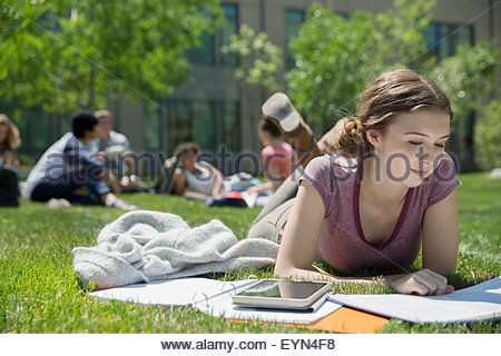 College student studying on sunny campus lawn - Stock Photo