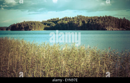 Vintage toned image of lake and forest, Finland - Stock Photo