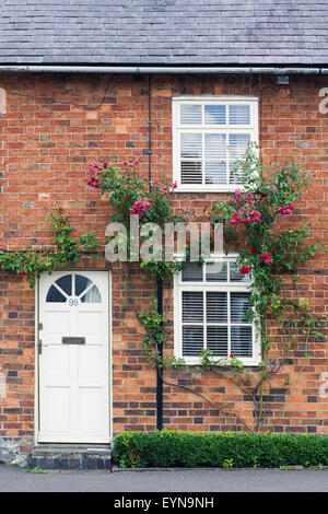 Red brick terraced cottage with roses around the door. - Stock Photo