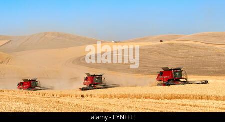 Multiple combines harvesting wheat in the Palouse region of Washington - Stock Photo