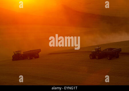 Tractors pulling grain carts across a field at sunset in the Palouse region of Washington - Stock Photo