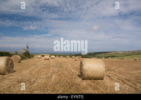 Sennen, Cornwall, UK. 2nd August 2015. UK Weather. Dry and Sunny over West Cornwall, with farmers making hay while - Stock Photo