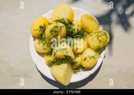 Boiled potatoes with herbs - Stock Photo