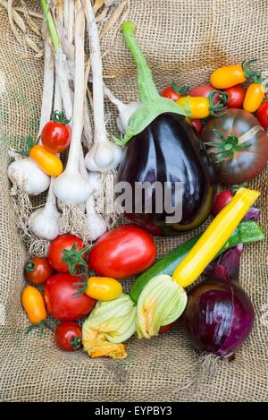 Freshly harvested various summer vegetables, including tomatoes, onion, courgettes, aubergine and garlic. - Stock Photo