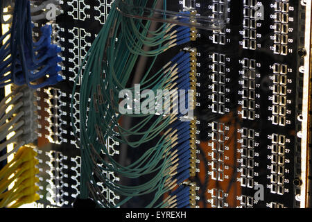 Networking patch panel with ethernet and fiber optic cables. - Stock Photo
