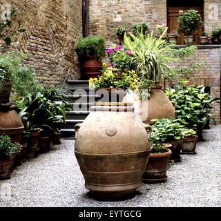 Hinterhofbegrünung, Hausbegrünung; Blumenfenster; Hinterhof - Stock Photo