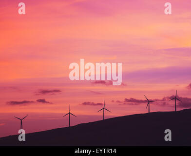 Windmills at Sunset. Green Energy Future. Clean Technology. - Stock Photo