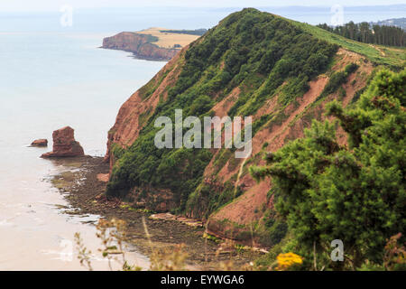 Hern Point Rock from High Peak, on the South West Coast Path, just above Sidmouth and looking towards Ladram Bay. - Stock Photo