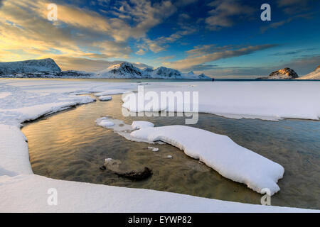 The golden sunrise reflected in a pool of the clear sea where the snow has melted, Haukland, Lofoten Islands, Arctic, Norway