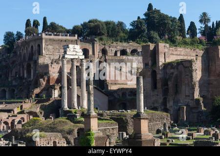 Ancient Roman Forum and the three columns of Temple of Castor and Pollux, UNESCO World Heritage Site, Rome, Lazio, - Stock Photo