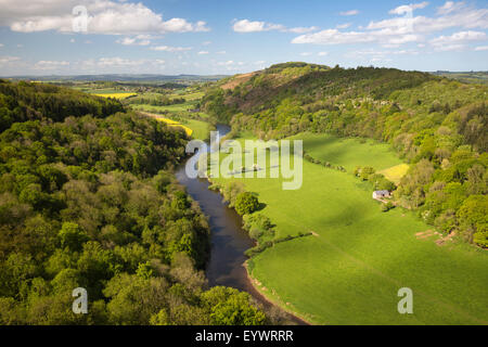 View over Wye Valley from Symonds Yat Rock, Symonds Yat, Forest of Dean, Herefordshire, England, United Kingdom, - Stock Photo