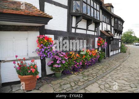 Colourful window boxes surrounding lattice window of medieval weavers' cottage in Biddenden, Kent, UK - Stock Photo