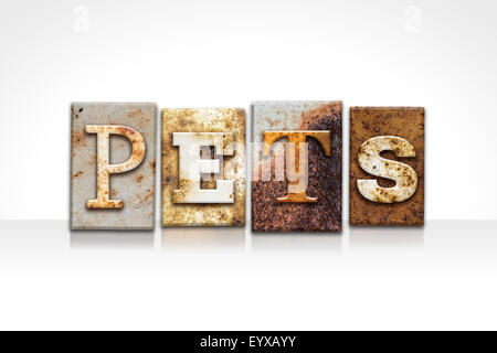 The word 'PETS' written in rusty metal letterpress type isolated on a white background. - Stock Photo