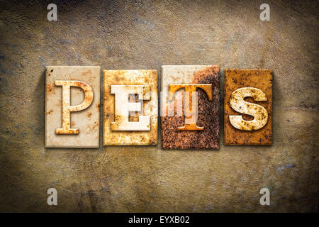 The word 'PETS' written in rusty metal letterpress type on an old aged leather background. - Stock Photo