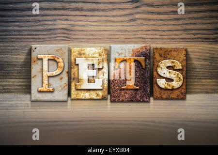 The word 'PETS' written in rusty metal letterpress type sitting on a wooden ledge background. - Stock Photo