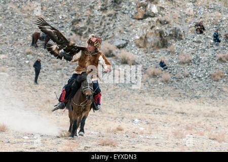Eagle hunter competitor with eagle on the lure, Eagle Festival, Olgii, Western Mongolia - Stock Photo