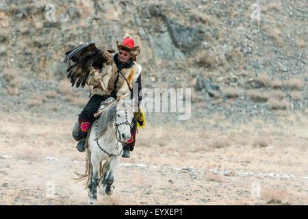 Eagle hunter and his bird on the lure, Eagle Festival, Olgii, Western Mongolia - Stock Photo