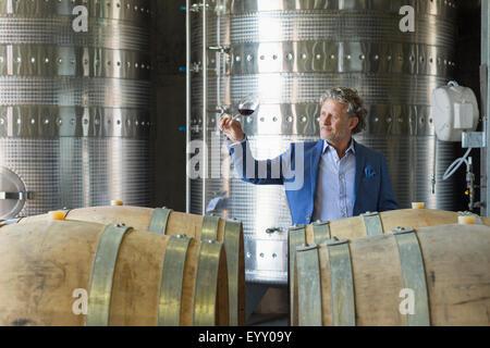 Vintner examining red wine in winery cellar - Stock Photo