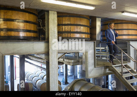 Vintner with red wine on platform in winery cellar - Stock Photo