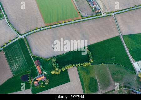 aerial view to agricultural area with fields, grasslands and hedges, Belgium - Stock Photo
