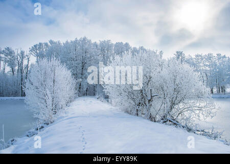 trail going through two little lakes in winter, Germany, Bavaria - Stock Photo