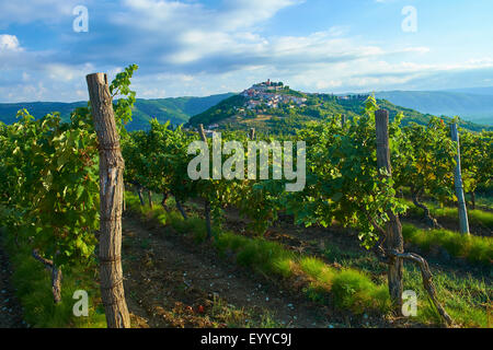 Motovun/Montona is a medieval town in central Istria, Croatia. - Stock Photo