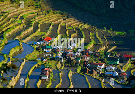 village in the shaped like an amphitheatre Batad rice terraces, Philippines, Luzon, Banaue - Stock Photo