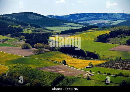 low mountain scenery near Bruchhausen in spring, Germany, North Rhine-Westphalia, Sauerland, Olsberg - Stock Photo