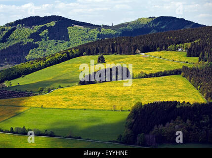 low mountain scenery near Bruchhausen in spring, Germany, North Rhine-Westphalia, Sauerland, Olsberg - Stock Photo