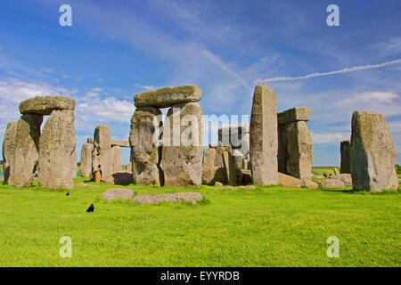 Stonehenge, Wiltshire, United Kingdom, England, Stonehenge - Stock Photo