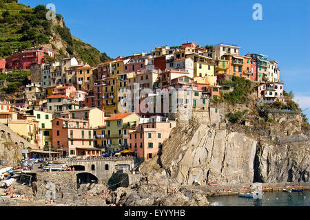 village Manarolo in the Cinque Terre National Park in Liguria, Italy, Liguria, Cinque Terre National Park, Manarolo - Stock Photo