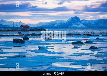 iced fjord during the polar night, Norway, Vester�len, Insel And�ya - Stock Photo