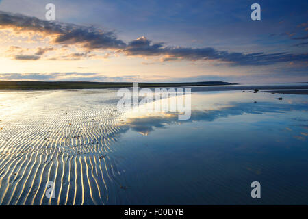 sand ripples and stones on sandbank, Norway, Varangerfjord - Stock Photo