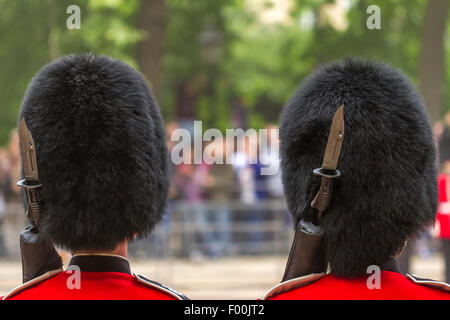 Bearskins and  Fixed bayonets of foot soldiers of The Grenadier Guards lining The Mall ,Trooping  The Colour ,The - Stock Photo
