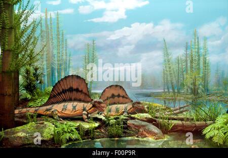 Permian Period, Life comes to the Land, Dimetrodon grandis - Stock Photo