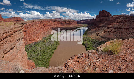 View of the Colorado River near Dead Horse Point State Park, Utah - Stock Photo