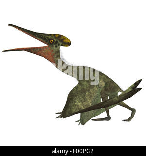 Pterodactylus was a flying carnivorous reptile that lived in the Jurassic Period of Bavaria, Germany. - Stock Photo