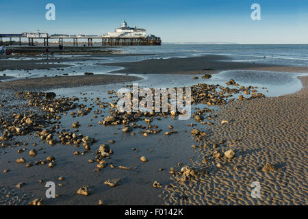 The beach at low tide, with the pier in the background, at Eastbourne, East Sussex, England, UK. - Stock Photo