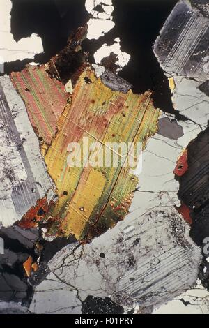 Minerals: Rocks. Biotite. Crossed nicols - Stock Photo
