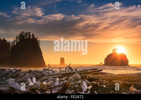 Sunset La Push Beach in Olympic National Park, Washington State, USA - Stock Photo