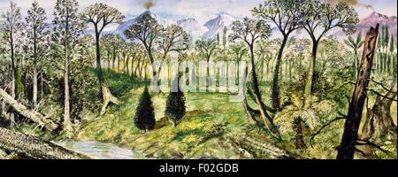 Forest of the Carboniferous Period. Drawing. - Stock Photo