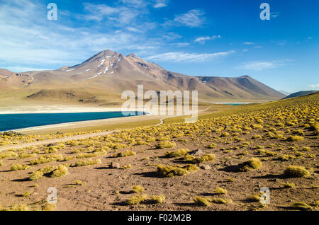 Altiplano lagoon, volcano and Andean peaks, Chile - Stock Photo