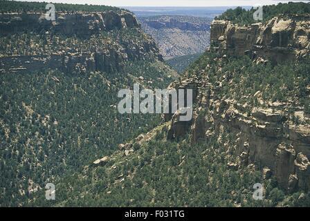 USA, Colorado, Mesa Verde National Park (UNESCO World Heritage List, 1978) - Stock Photo