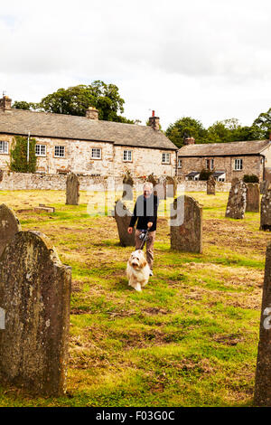 Old man walking dog on lead in graveyard church being dragged grave gravestones Yorkshire Dales UK England - Stock Photo