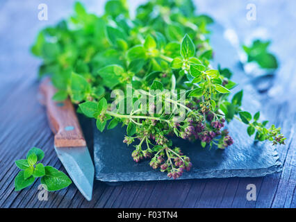 fresh aroma marjoram on the wooden table - Stock Photo