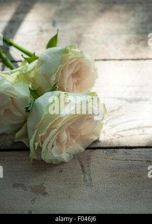 three roses on  wooden table in a patch of sun - Stock Photo