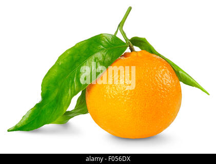 Tangerine isolated on white - Stock Photo