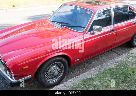 series 3 1985 classic red XJ6 jaguar 4 door saloon car in new south wales,australia - Stock Photo