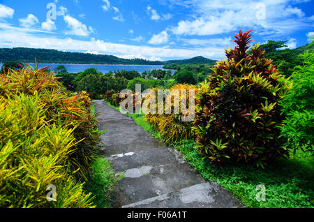 Colourful plants on the pathway to Fort Belgica, Banda Neira, Indonesia, The Spice Islands - Stock Photo