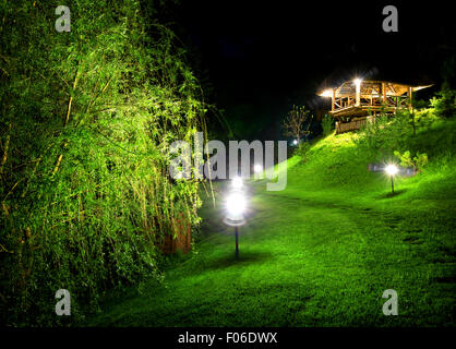Wooden arbour and green osier at night - Stock Photo